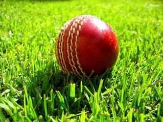 Cricket & Rounders